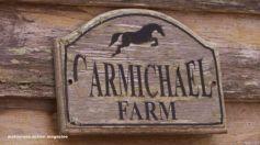 La Carmichael's Farm e i fratelli Martin